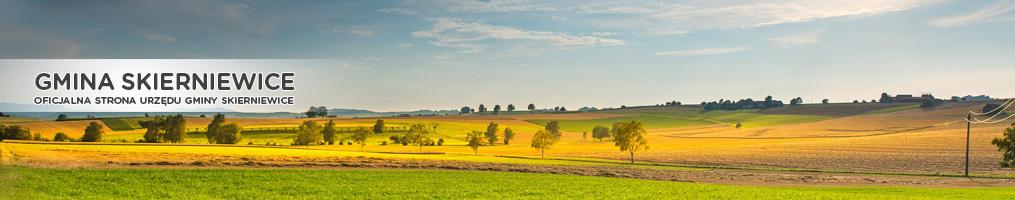 Gmina Skierniewice